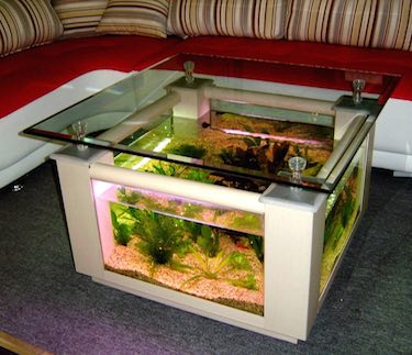 68 Gallon Square Table Aquarium