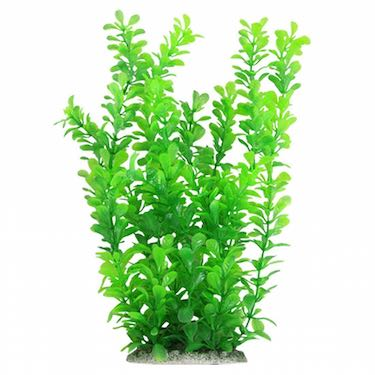 Aquarium Plant Decoration