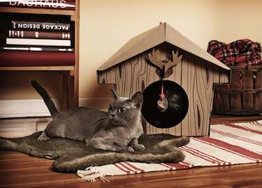 Loyal Luxe Canadian Cabin Cat Playhouse
