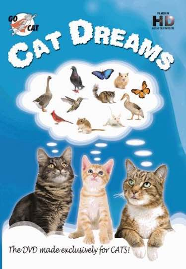 'Cat Dreams' DVD for Cats