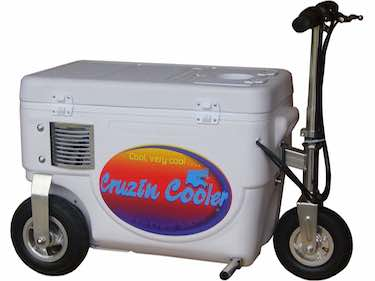 1000 Watt Cruzin Cooler